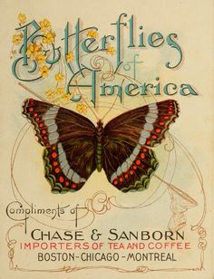 The beautiful faceplate of the Butterflies of America handbook. Why cant companies give out things like this to promote their items these days?