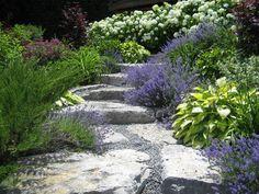 Sunny's hillside garden in Ontario   Fine Gardening