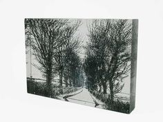 Junction Art Gallery - Helen Slater 'Avenue' Cast glass with glass drawings £380.00 http://www.junctionartgallery.co.uk/artists/glass/helen-slater/avenue