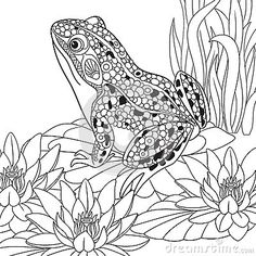 Coloring Page Frog Dissection Worksheet Friendship Tattoos Symbols ...