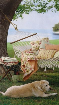 MUST HAVES!!!  //  outdoor // hammock on the lake