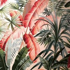 so tropical | ban.do