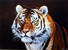 Edward Aldrich Siberian Tiger