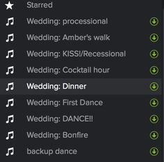 As with just about everything else involved in a wedding, DJs are expensive. A good DJ can read the flow of the party and choose the appropriate songs for