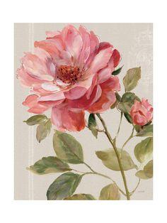 Decorative Art, Lithographs and Prints at Art.com
