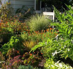 InterLeafings: Garden Designers Roundtable: Lawn Alternatives