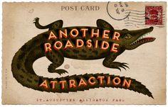Alligator Postcard - Another Roadside Attraction Vintage Labels, Vintage Ephemera, Vintage Postcards, Graphics Vintage, Garden And Gun Magazine, Vintage Florida, Roadside Attractions, Vintage Typography, Mail Art