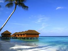 Hotel Deal Checker finds Veligandu Island Resort deals on all the top travel stites at once. Best Price Guaranteed on Veligandu Island Resort at Hotel Deal Checker. Maldives Vacation, Visit Maldives, Maldives Resort, Resort Spa, Restaurant Bar, Excellence Resorts, Water Villa, Hotels, Island Resort
