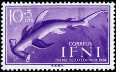 Hammerhead shark, semi-postal (charity) stamp from a set designed by R.A. Fabre and V.D. Urosa, printed by photogravure, and issued for use in the Spanish colony of Ifni on November 23, 1954 for Colonial Stamp Day, Scott No. B20.