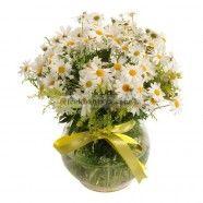 Çankaya Çiçekçi http://www.cicekbahcem.com/cankaya-cicekci