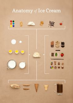 The Anatomy of Ice Cream | Small Batch Creative