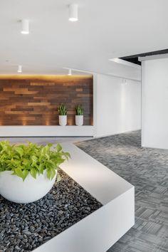 polaris-ventures-office-design-1. #wood panel #green #plants