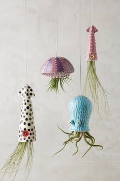 succulents What's better than a hanging succulent planter? A sea creature hanging succulent planter Hanging Succulents, Hanging Planters, Outdoor Planters, Succulent Planters, Succulents Garden, Garden Planters, Hanging Gardens, Succulent Containers, Fall Planters
