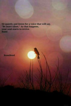 Citaten Rumi Lengkap : 1878 best quotes images in 2019 thoughts quotes to live by