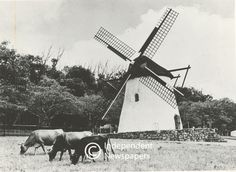 Mostert's Mill in the 1950's, Cape Town