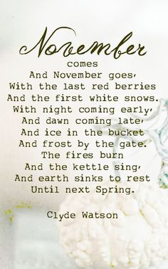 "AUTUMN, WINTER, SPRING AND SUMMER ~ ""The seasons are what a symphony ought to be: four perfect movements in harmony with each other. Great Quotes, Quotes To Live By, Me Quotes, Inspirational Quotes, Fall Quotes, The Words, November Quotes, November Poem, Hello November"