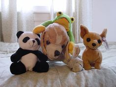 A few of my brother's stuffed animals.     Teddy bears are just adorable and almost everyone loves them. These are just gorgeous http://www.squidoo.com/makingbears