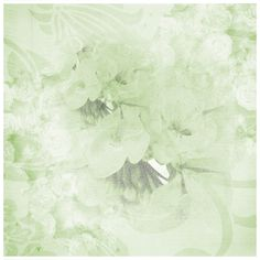 Fond - Printable - Background - Paper - Green