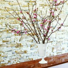 DIY INDOOR GARDEN (Technique) :: How to Force Branches to Bloom Indoors :: Another highly informative tutorial. You can cut braches from your own yard or purchase from a florist. The following respond well to forcing: Apple & Crabapple, European Pussy Willow, Flowering Almond, Cherry, & Plum, Flowering Dogwood, Forsythia, Hawthorn, Honeysuckle, Japanese or Flowering Quince, Lilac, Redbud, Saucer Magnolia, Spirea, Star Magnolia, Vernal Witch Hazel, & Viburnum | #bouquets #houseplants