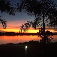 A Mekong sunset fringed by palm trees and the darkened banks of Thailand just over the water. #Laos #Vientiane #mekong #mekongriver #asia #nofilter #instalife #instatravel #eatdrinklaos #beautiful #sunsets   Eat Drink Laos http://eatdrinklaos.com