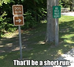 """short run I'd say """" no dogs past here"""" the green sign says"""