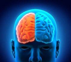 Sådan slanker du maven ved at følge æblekuren — Bedre Livsstil Corpus Callosum, Seizure Disorder, Kinds Of Diseases, Neuroplasticity, Neuroscience, Mood And Tone, Binaural Beats, Breathing Techniques, Diy Home