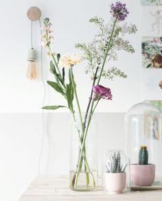 Flowers | missjettle