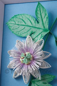 *QUILLING ~ Quilled passionflower, closeup by Inna's Creations, via Flickr