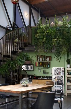 Snog Productions' Magical Garden Workspace Workspace Tour | Apartment Therapy Love the plants and wall color