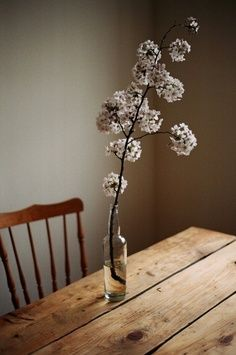 Still life... love budding/ flowering branch in a glass bottle ... on rough table surface with wooden chair