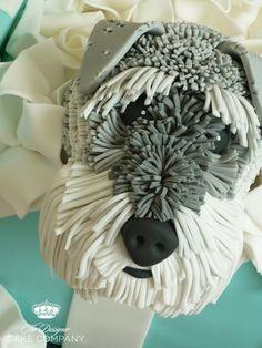 Schnauzer dog gift box cake
