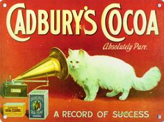 New CADBURYS COCOA cat enamel style tin metal vintage advertising sign