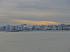 love love love   Montevideo