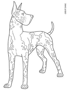 1000 images about color cats dogs on pinterest for Great dane coloring pages