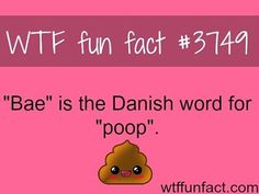 So we're calling our crushes 'poop'? It's like; Hey! Natsu is my poop! XD