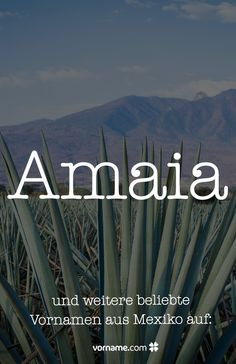 Dir gefällt der Mädchenname Amaia? Hier findest Du wunderschöne Vornamen für Mädchen und Jungen, die in Mexiko beliebt sind.