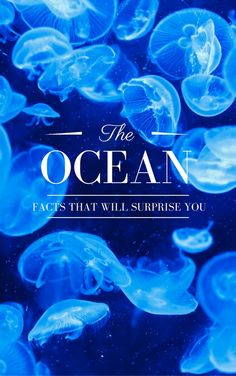From the mesmerizing marine life to the waters themselves, it seems as though we will never know all the secrets of the sea.  But here are a few of the most interesting that we do know.