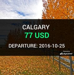 Flight from Seattle to Calgary by Alaska Airlines #travel #ticket #flight #deals   BOOK NOW >>>