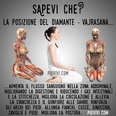 Yoga 1, Yin Yoga, Kundalini Yoga, Yoga Meditation, Health Education, Physical Education, Hata Yoga, Yoga Anatomy, Yoga Positions
