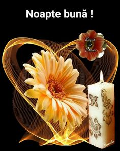 les meli melo de mamietitine - Page 11 Flowers Gif, Beautiful Rose Flowers, Beautiful Gif, Gifs, Moving Pictures Gif, Candle Lanterns, Candles, Corazones Gif, Beau Gif
