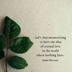 In this world where nothing lasts, even the sight of eternal love is so comforting ❤ . Eternal Love Quotes, Self Love Quotes, Gift Quotes, Me Quotes, Dark Poetry, Poetry Feelings, Dark Quotes, Happy Relationships, Mindfulness Quotes