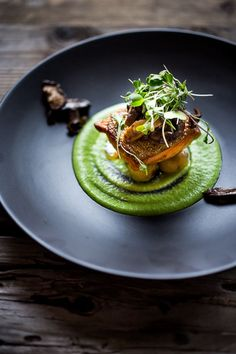 A delicious recipe for Pan-Seared Steelhead ( or salmon) with Spring Pea Sauce, truffle oil and mushrooms - perfect for spring! Truffle Oil, Truffle Sauce, Sauce For Fish, Sauce For Salmon, Lake Trout Recipes, Fish Recipes, Seafood Recipes, Plating Ideas, Seared Fish