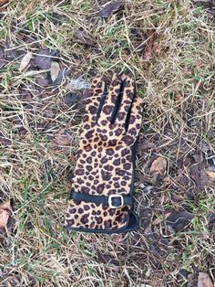 Lonely cheetah glove