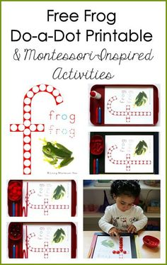 FREE Montessori-inspired frog do-a-dot printable (instant download). Perfect for preschool Leap Year, frog unit studies, or pond units at home or in the classroom.