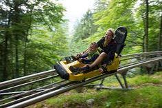 the meter's alpine roller coaster Top 10 Roller Coasters, Alpine Coaster, Outdoor Power Equipment, Garden Tools
