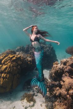 Meet the beautiful traveling mermaid Hyli and her photographer husband Joe. They travel all around the world creating world-class photography! Fantasy Mermaids, Mermaids And Mermen, Realistic Mermaid, Real Life Mermaids, Mermaid Pose, Silicone Mermaid Tails, Mermaid Artwork, Mermaid Swimming, Mermaid Pictures