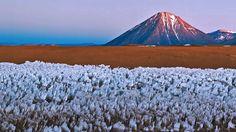 Bing Image Archive: Licancabur volcano on the border of Bolivia and Chile (© ESO/B. Tafreshi/REX/Shutterstock)(Bing Australia)