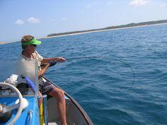 41 Best Funny Fishing Photos Fifth Amendment Deep Sea