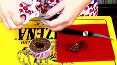 Decorando Cupcakes