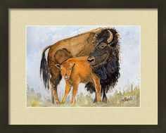 Bison Framed Print featuring the painting Don't Mess With Mom by Michele Ross